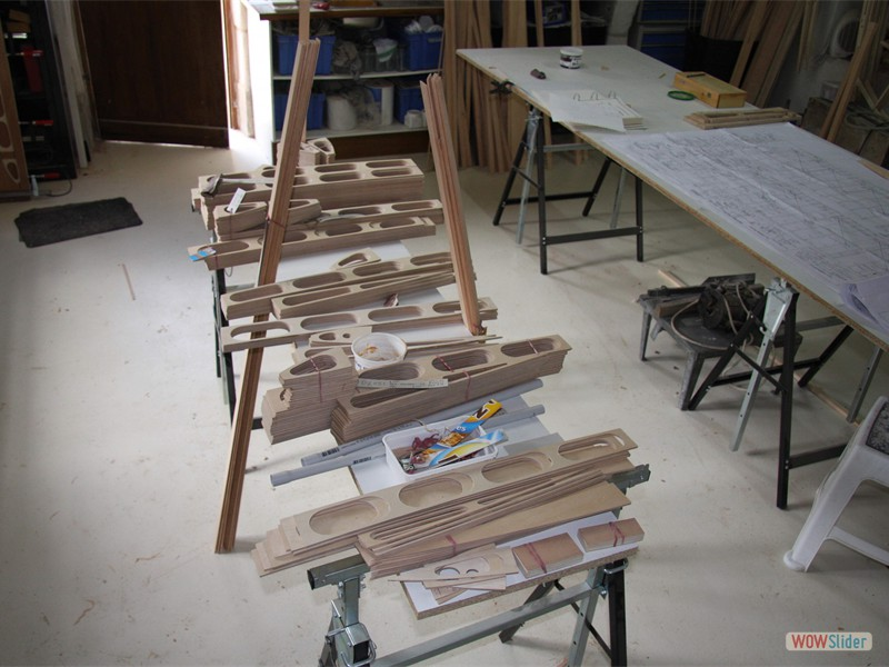 Rib Ply Sections