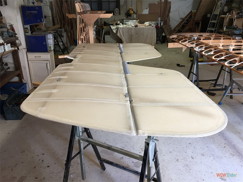 Tailplane covering