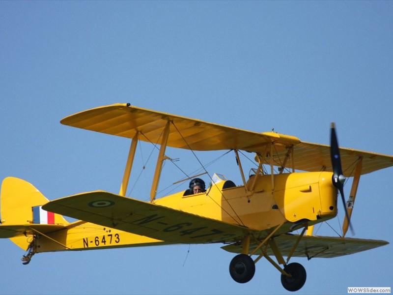 Shaunne flying